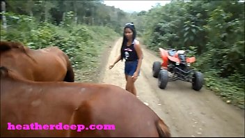 3d horse animated Jess farmington nm